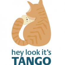 TangoVision
